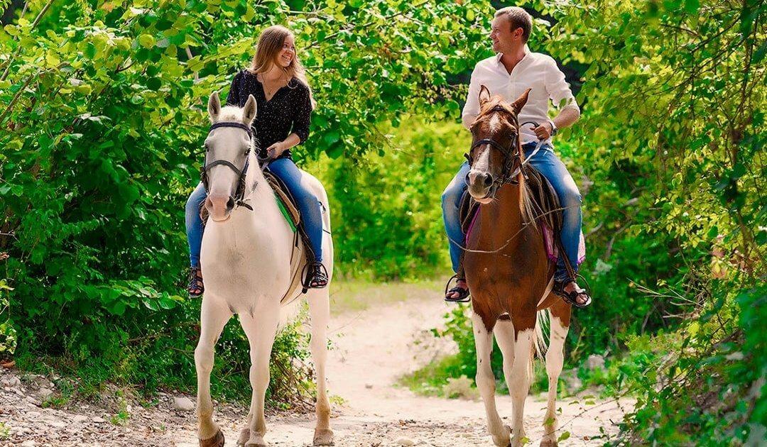 Конные прогулки в Геленджике 4 - Топовые развлечения на курортах Кубани