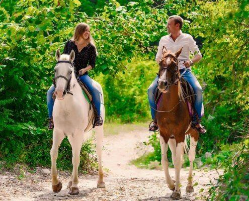 Конные прогулки в Геленджике 9 - Топовые развлечения на курортах Кубани